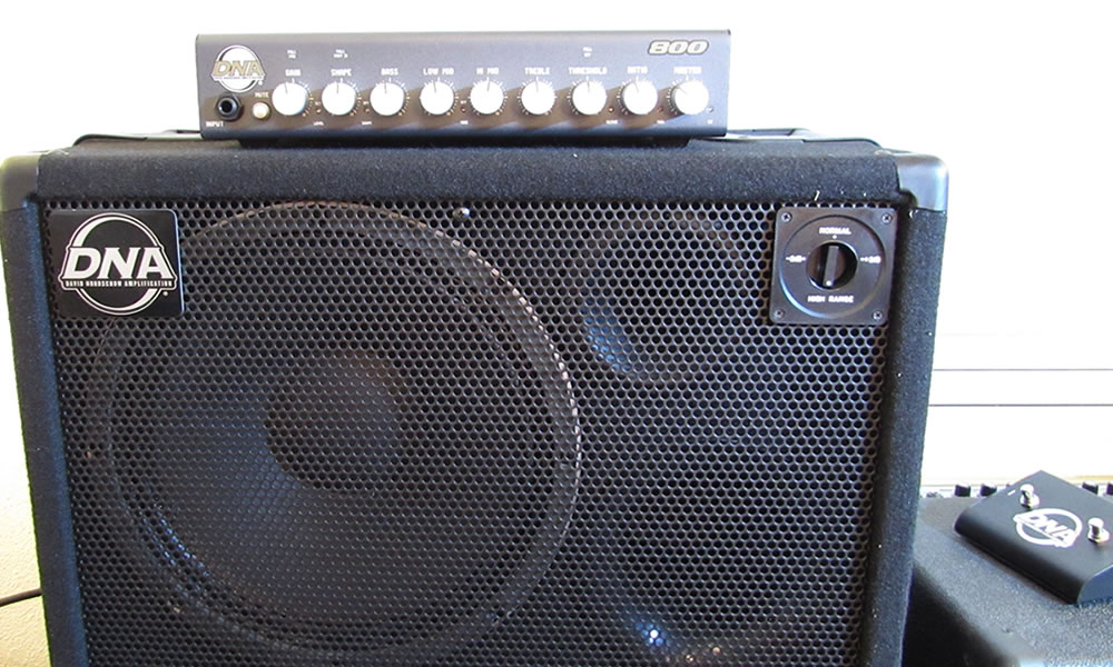 Year of Bass Amplification David Nordschow